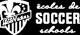 ecoles de soccer