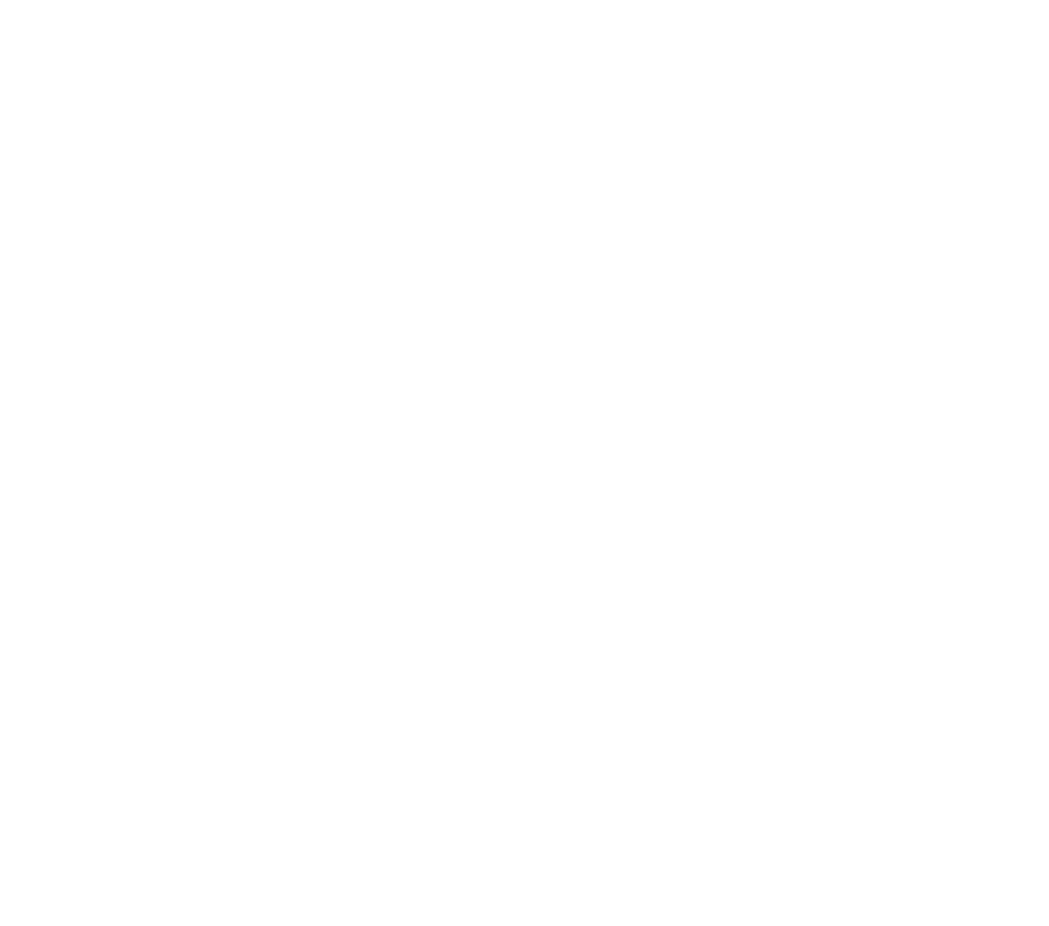 L'Impact Montréalaise